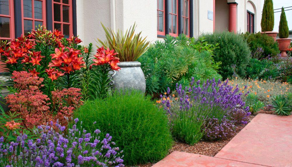 Plantas En El Jardin Imagenes Y Fotos - Decoracion-de-jardines-con-plantas